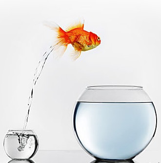 vermischtes aus assekuranz und vorsorge bocquell. Black Bedroom Furniture Sets. Home Design Ideas